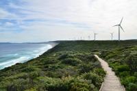 albany-wind-farm