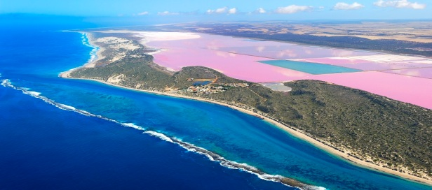 hutt-lagoon-pink-lake-western-australia-by-air